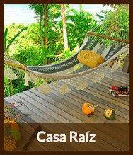 Thumbnails_casa_raiz