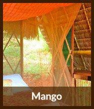 Thumbnails_mango