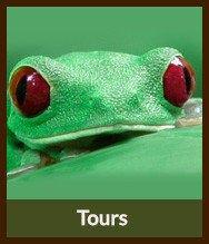 Thumbnails_tours