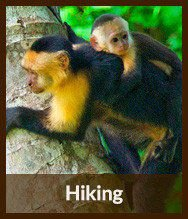 Thumbnails_hiking