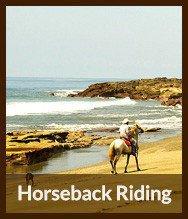 Thumbnails_horseback_riding