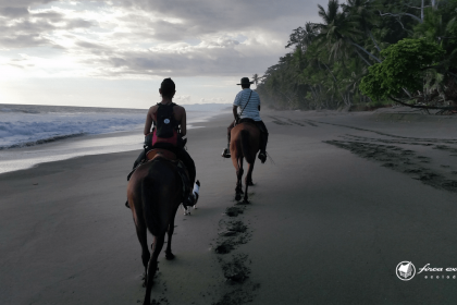beach-horseback_riding